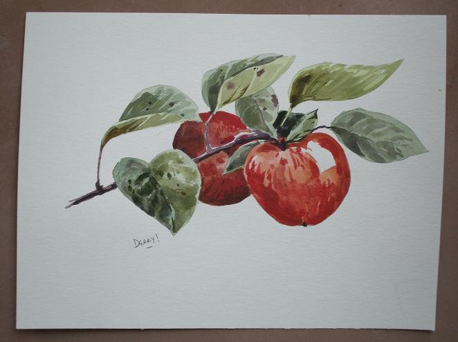 Apples - pommes