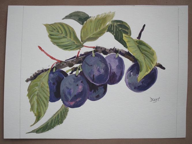 Plums - prunes